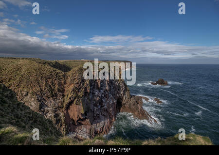 Cliff Top View looking north at the Buller of Buchan, Scotland, UK - Stock Photo