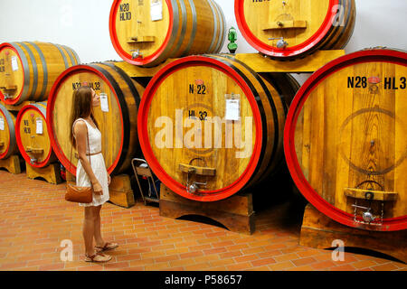 Young woman standing next to wooden barrels at a winery in Montalcino, Val d'Orcia, Tuscany, Italy. Montalcino is famous for its Brunello di Montalcin - Stock Photo