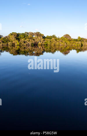 Amazonas, Brazil - River bank in the Amazon rainforest with dark waters of Negro river reflecting blue sky and vegetation on a sunny day. - Stock Photo