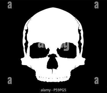 simple skull in full face - Stock Photo