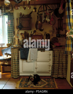 Yorkshire terrier dog lying on mat beside white Aga in old faxshioned cottage kitchen - Stock Photo