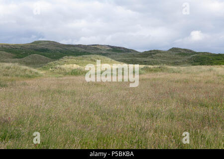 Sheskinmore Nature Reserve is a hidden gem in County Donegal in Ireland designated a protected conservation area - Stock Photo