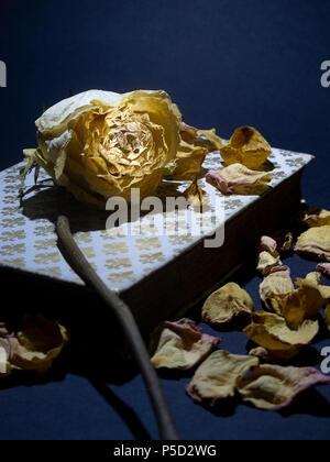 Withered rose placed on the cover of an old closed book, with rose petals scattered around - Stock Photo