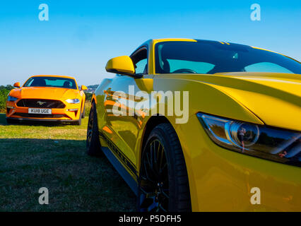 2 cool fast cars, 2 European right hand drive Ford Mustang 5 litre V8 GT Fastback Auto cars - Stock Photo