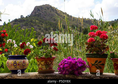 Painted Ceramic Plant Pots, multi Colored with flowers - Stock Photo