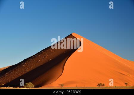 Dune 45, sand dune in the evening light, Sossusvlei, Namib Naukluft National Park, Namibia - Stock Photo