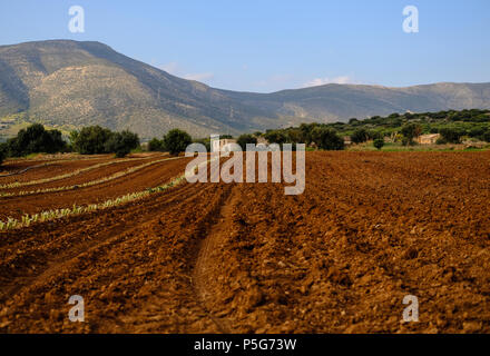 Plowed Farm Fields with farm house in preparation for latest crops with Mountains and Blue Skies, Lagonisi, East Attica, Greece. - Stock Photo