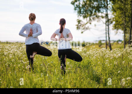 Two women le doing yoga exercises, standing on one leg at outdoors in nature park. - Stock Photo
