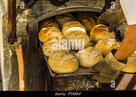 Freshly baked bread on a baking tray at an oven with firewood, Germany - Stock Photo