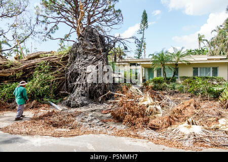 Naples Florida Crayton Road Hurricane Irma wind damage destruction aftermath fallen trees bushes branches debris pile storm disaster recovery cleanup - Stock Photo