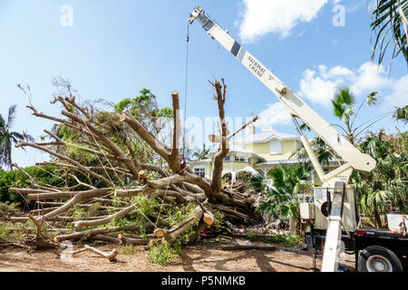 Naples Florida Crayton Road Hurricane Irma wind damage destruction aftermath fallen trees removal crane storm disaster recovery cleanup front yard - Stock Photo