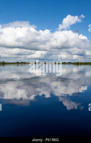 Amazonas, Brazil - River bank in the Amazon rainforest with dark waters of Negro river reflecting blue sky and clouds and forest in the background on  - Stock Photo