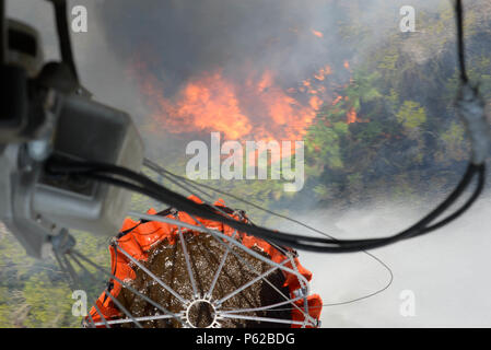 A U.S. Army CH-47 Chinook uses a Bambi Bucket to drop water on a fire April 1, 2016, near Tela, Honduras, at the request of Honduran President Juan Orlando Hernandez. The Chinooks were a part of aircraft from the 1-228th Aviation Regiment to support the Honduran Fire Department, Air Force and Army in the firefighting efforts. (U.S. Air Force photo by Staff Sgt. Westin Warburton/ Released) - Stock Photo