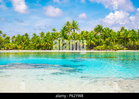 Tropical palm trees and lagoon of Fakarava, French Polynesia. Summer vacation concept. - Stock Photo