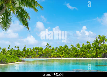 Tropical lagoon scenery with coconut palm trees and blue sky. Exotic summer destination. - Stock Photo