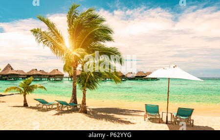 Tropical beach with beach chairs, umbrella and palm tree on a beautiful day. Travel, tourism and summer vacation concept. - Stock Photo