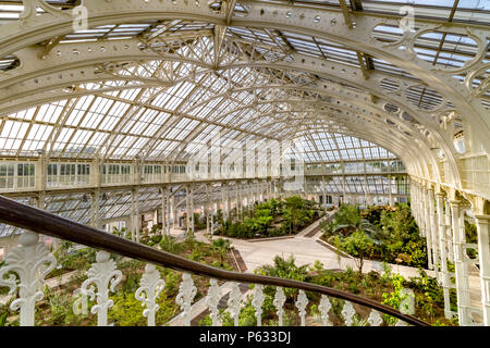 After a 5 year restoration, the newly restored Temperate House at The Royal Botanic Gardens, Kew in London has reopened to visitors . - Stock Photo