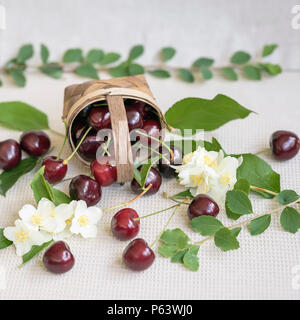 Wicker basket with ripe cherry and scattered berries, leaves, flowers on light background. Vegetarian concept, diet, detox, organic vitamins and summer - Stock Photo