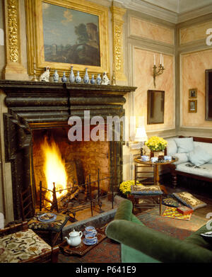 Fireplace with lighted fire and marble mantelpiece in country living room with marble effect walls - Stock Photo