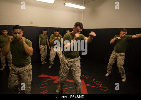 Marines With A Marine Corps Martial Arts Program Instructor Course