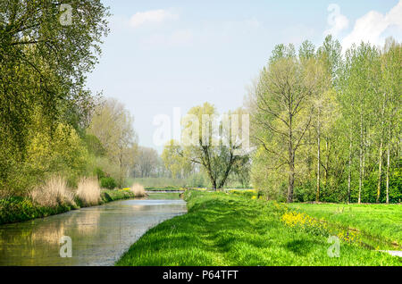 Public footpath along a canal on a sunny day in a varied landscape near Geldermalsen, The Netherlands - Stock Photo
