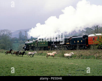 Welsh Marshes Express. Much to the excitement of the ponies, Nos.4930 Hagley Hall and 5000 power out of Church Stretton en route for Hereford. 11.04.1 - Stock Photo