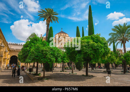 View of the Patio de los Naranjos (Courtyard of The Orange Trees) in the Cordoba Cathedral Mosque (La Mezquita) in Cordoba (Cordova), Andalucia, Spain. - Stock Photo