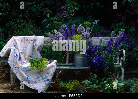 Blue delphiniums in metal vases on vintage garden bench with patchwork quillted throw - Stock Photo
