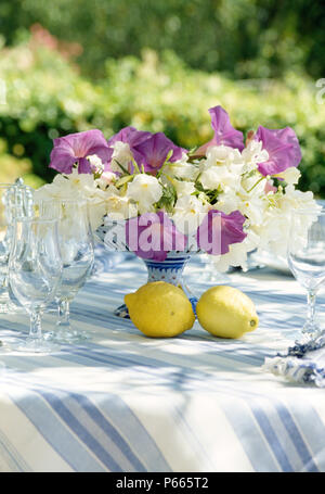 Still-Life of purple morning glory and white summer flowers in stemmed vase on garden table with lemons on blue striped cloth - Stock Photo