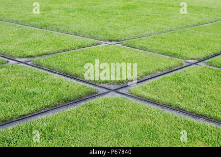 France, Le Mans, modern Tramway tracks in grass - Stock Photo