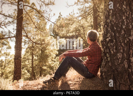 Shinrin Yoku, (Forest Bathing). Slim, mature male hiker relaxing in early morning sunshine in pine forest. - Stock Photo