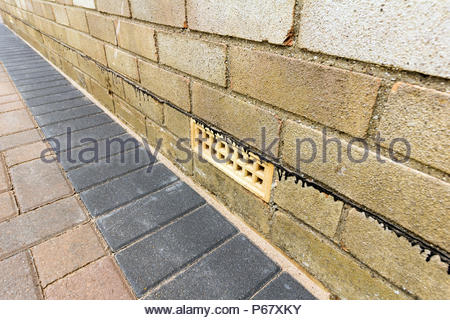 Air brick and damp proof course situated in a brick wall of a house - Stock Photo