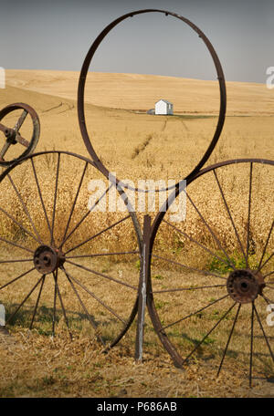 Palouse Wheel Fence, Washington A wheel fence in the Palouse in front of a field of chick peas. Washington State, USA. - Stock Photo
