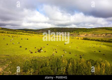 (180628) -- BEIJING, June 28, 2018 (Xinhua) -- Photo taken on Sept. 12, 2017 shows a grassland in Hulun Buir, north China's Inner Mongolia Autonomous Region. Comprehensive progress has been made since the report delivered at the 18th National Congress of the Communist Party of China (CPC) in 2012 included ecological development as a major task in the country's overall plan and proposed building a 'beautiful China' as a grand goal.  (Xinhua/Gao Rongguang) (wyo)(zt) - Stock Photo