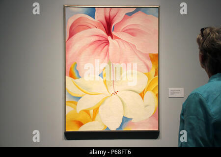 New York, USA. 27th June, 2018. A person looks at the image 'Hibiscus with Plumeria' of the American artist Georgia O'Keefe at the Botanical Gardens. Credit: Christina Horsten/dpa/Alamy Live News - Stock Photo