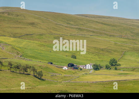 North Pennines AONB Landscape, Marshes Gill Farm, Harwood, Upper Teesdale - Stock Photo
