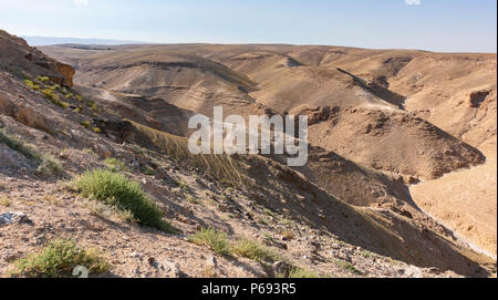 nahal kidod is a typical wadi or dry stream bed in the south judaean desert in the negev near Arad, Israel - Stock Photo