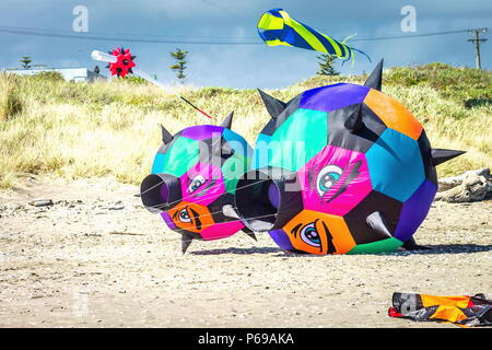 Otaki, New Zealand - March 3 2016: Brightly colored kites on the Beach are part of the annual Otaki Kite Flying Festival held each year in summer. - Stock Photo