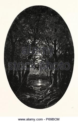 Under the silver full-moonlight Shimmereth white the lake Seen through the natural arches That the crossing branches make. Weird is the quiet beauty Enwrapping the scene like a spell Where alike the naiad and dryad Should be happy and proud to dwell. - Stock Photo