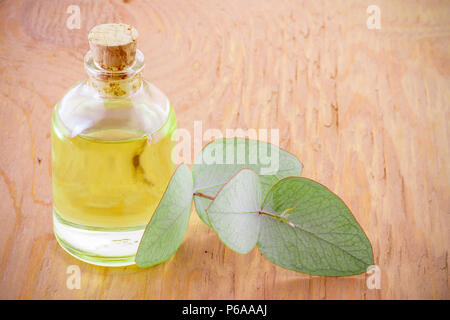 jar with oil and eucalyptus leaves on wood - Stock Photo