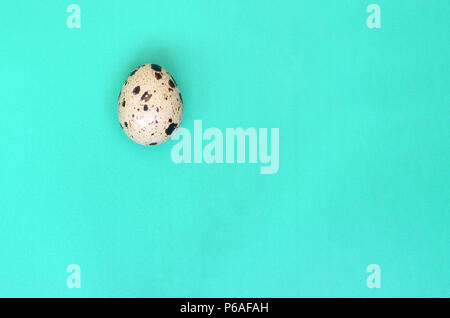 One quail egg on a light green surface, top view, empty place for text. Minimalism . - Stock Photo