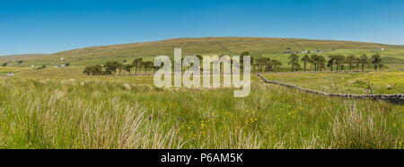North Pennines AONB Panoramic Landscape, north east over Harwood, Upper Teesdale - Stock Photo