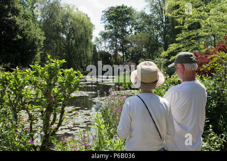 France, Giverny, departement of Eure, Upper Normandy, Pond with water lilies in Claude Monet's garden. - Stock Photo