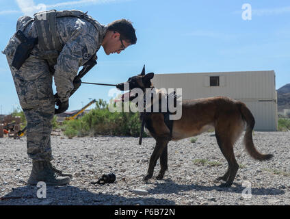 Staff Sgt. Ryne Wilson, a 99th Security Forces Squadron military working dog handler, and his MWD, Seneca, participate in a training exercise at Nellis Air Force Base, Nev., April 26, 2018. Wilson and Seneca have been partners for six months. (U.S. Air Force photo by Airman Bailee A. Darbasie) - Stock Photo