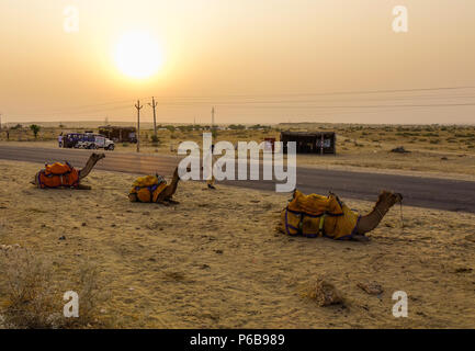 Jaisalmer, India - Nov 8, 2017. Camels waiting on Thar Desert in Jaisalmer, India. Thar Desert is a large arid region in the northwestern part of the  - Stock Photo