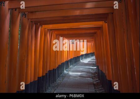 Japan, Kyoto City, Fushimi-Inari Taisha Shrine, Toriies - Stock Photo