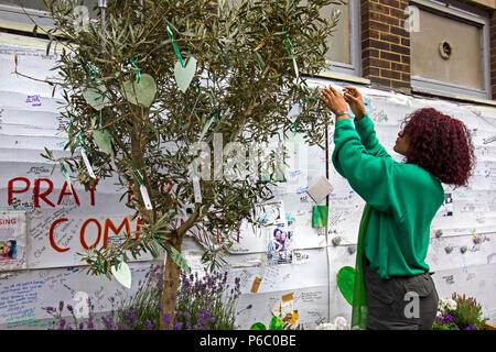 The first anniversary of the 24-storey Grenfell Tower block of public housing flats fire which claimed 72 lives. Young woman hanging messages/prayers on an Olive tree,  South Kensington, London, UK, 14th June 2018. - Stock Photo
