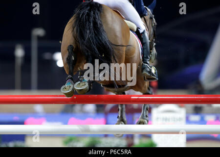 Doha, close-up, jumping horse over a steep jump - Stock Photo