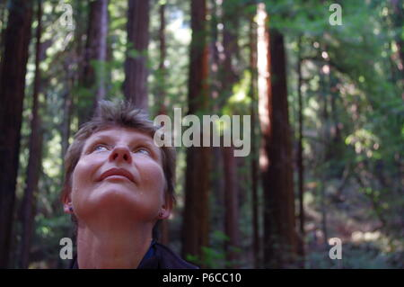 Woman listening to sequoia in a gentle breeze in the Muir Woods, California - Stock Photo