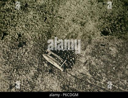 tank, world war i, British infantry, ww1, wwi, world war one - Stock Photo
